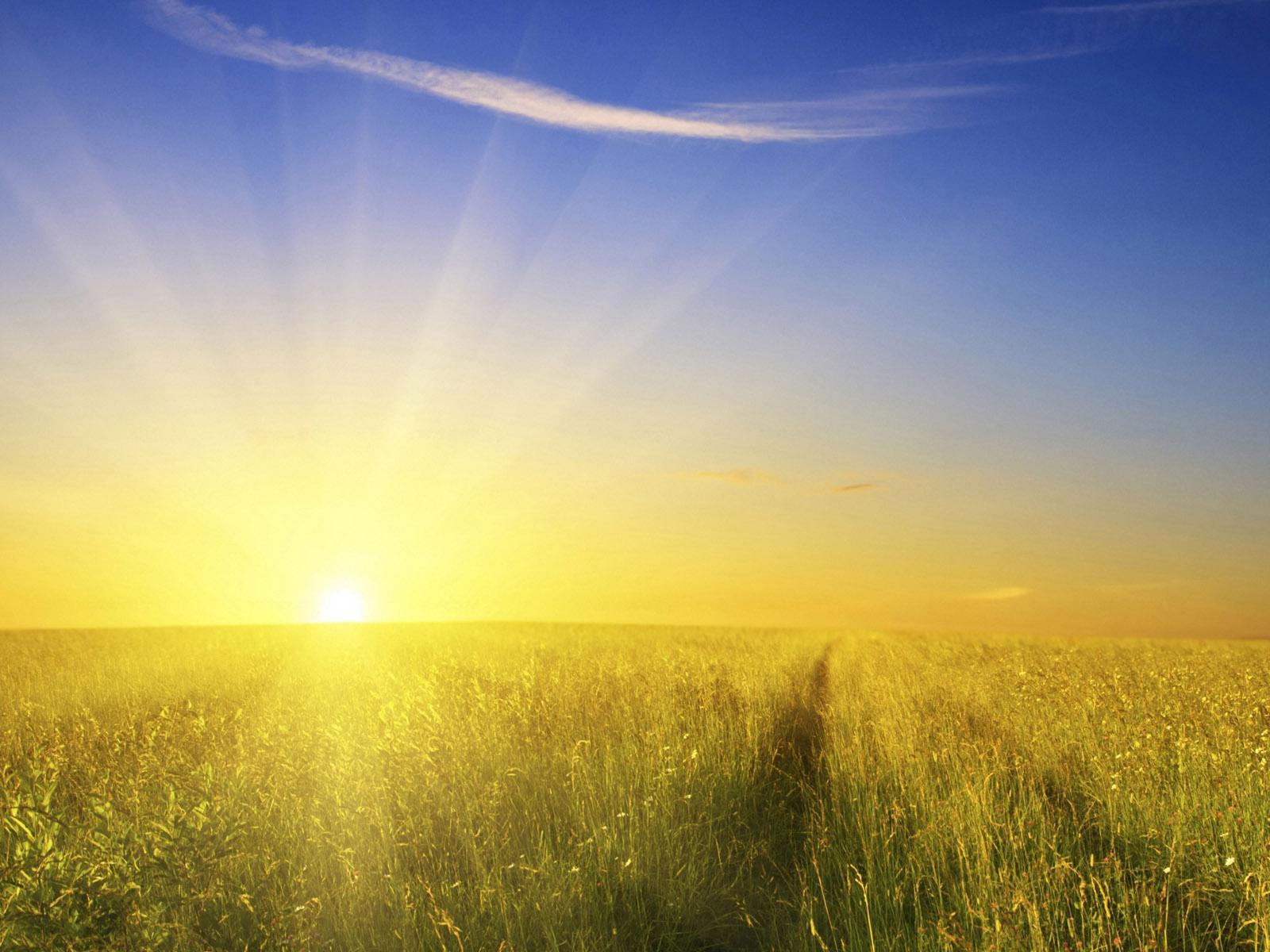 1002410-morning-sun