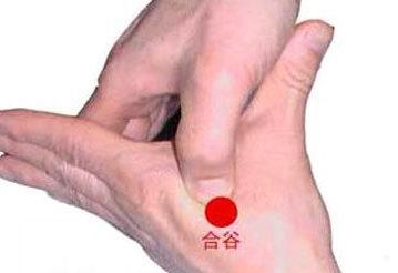 http://baikequanshuo123.com/zhongyiyangsheng/170.html